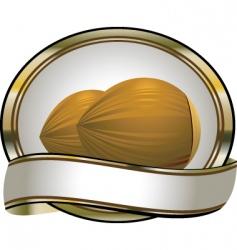 coca nuts vector image