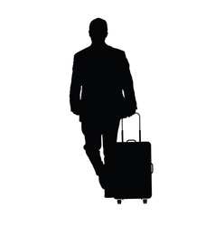 Man with travel baggage vector