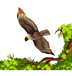 Eagle flying over the tree vector