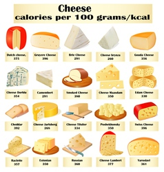 set of different kinds of cheese vector image vector image