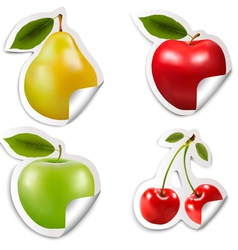 Set of flat fruit stickers vector image