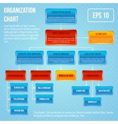 Organisational chart infographic vector image