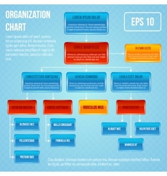 Organisational chart infographic vector