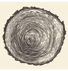 Tree Rings Engraved Annual Saw vector image vector image