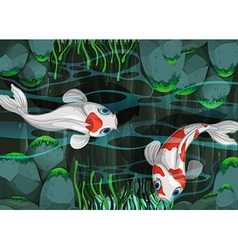 Two fish swimming in the pond vector image vector image