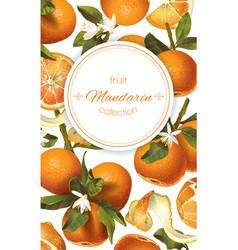 mandarin vertical banner vector image