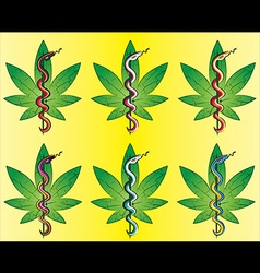Medical cannabis leaf snake symbol design vector