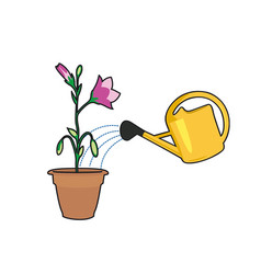 Plants and watering can vector
