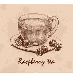 Raspberry tea vector