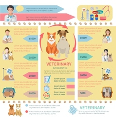 Veterinary Infographics vector image vector image