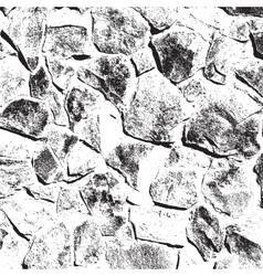 Wild Stone Texture vector image