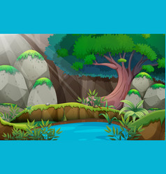 Forest scene with waterhole vector