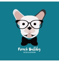 French bulldog design vector
