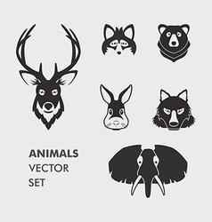Anim 01 03 vector