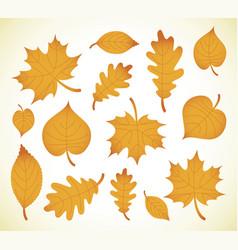 Autumn leaves simple cartoon flat style vector
