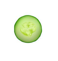 Cucumber isolated slice fresh icon food green vector