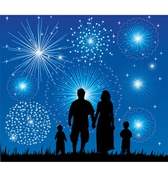 Family fireworks vector