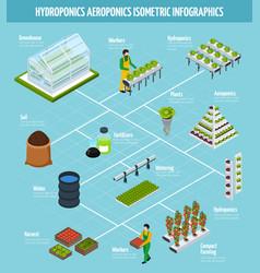 hydroponics infographic set vector image vector image