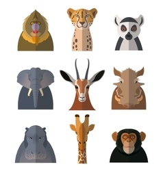 Icons of african animals3 vector image vector image