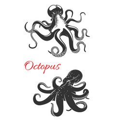 octopus marine animal icon set for tattoo design vector image