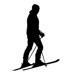 Skier standing on the snow sport vector