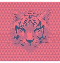 Tiger fashion vector image