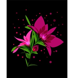 Magic pink flower blooming on black background vector