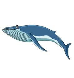 Big blue baleen whale vector image vector image
