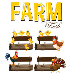 farm animals and signs vector image vector image