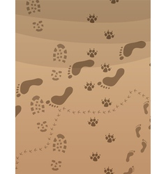 foot prints on the sand vector image vector image