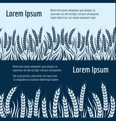 harvest horizontal banners design with wheats vector image vector image