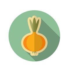 Onion flat icon vegetable vector