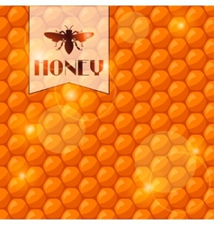 Abstract background with bee honeycombs and honey vector