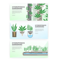Hydroponic system gardening technology vector