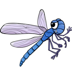 Dragonfly insect cartoon vector
