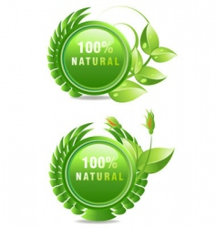 Natural products label vector