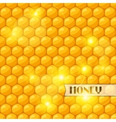 Abstract background with bee honeycombs and honey vector image