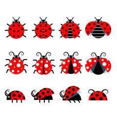 cute ladybug icons cartoon-style bug icons vector image