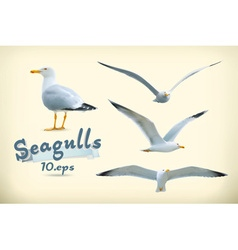 Sea gulls icon set vector