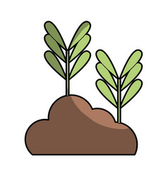 Natural plants with leaves and botanic ground vector