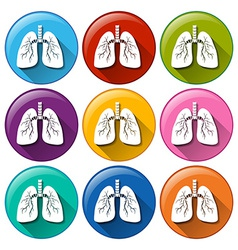 Buttons with lung organ vector