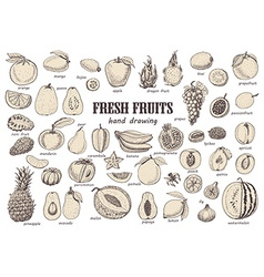 Big set with isolated fruits vector