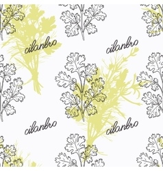 Hand drawn cilantro branch and handwritten sign vector