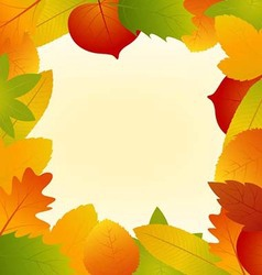 Autumn leaves frame isolated on background vector