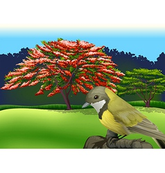A bird at the branch of a tree vector
