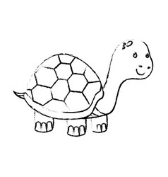 Cute turtle pet isolated icon vector