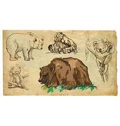 Animals theme bears - hand drawn pack vector