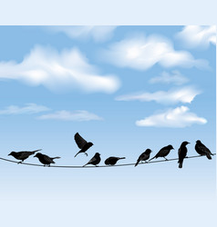 Birds on wires over blue sky background wild vector