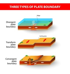 Tectonic plate vector