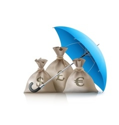 Umbrella protecting sacks vector image vector image